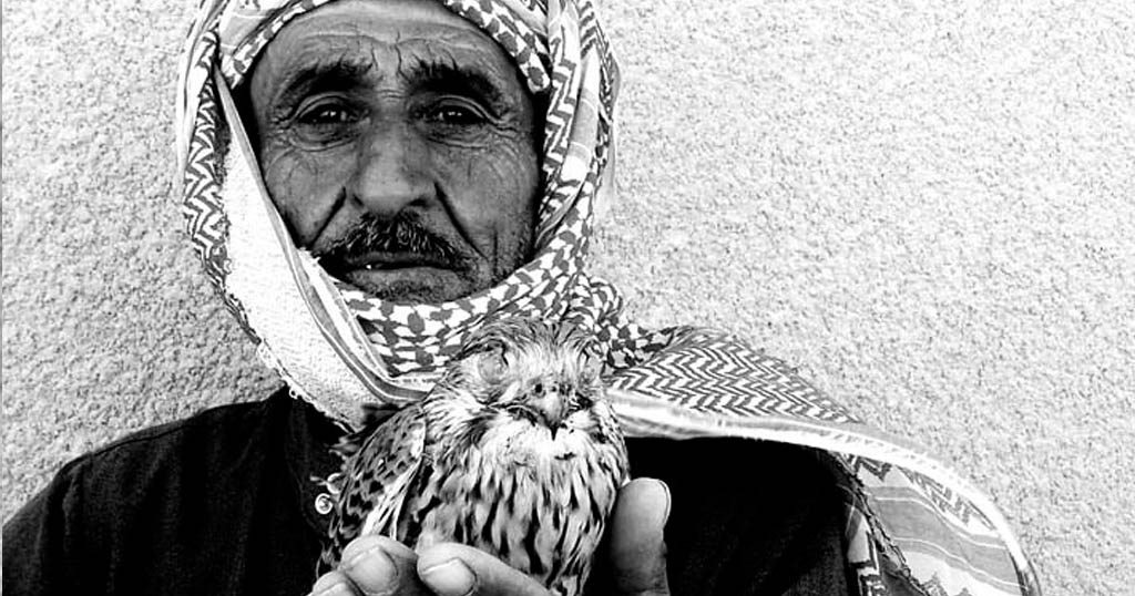An old man with a baby falcon.