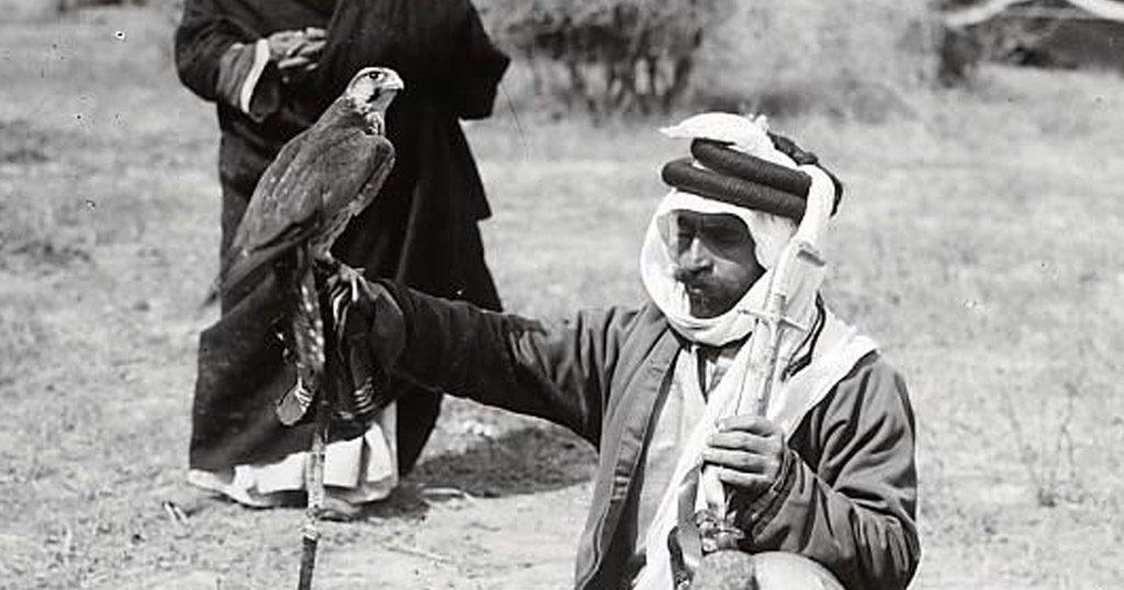 A Bedouin holding a falcon.