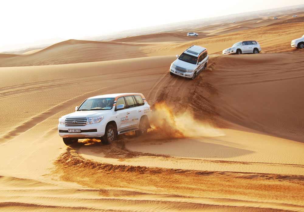 Morning Desert Safari - Day Out Dubai